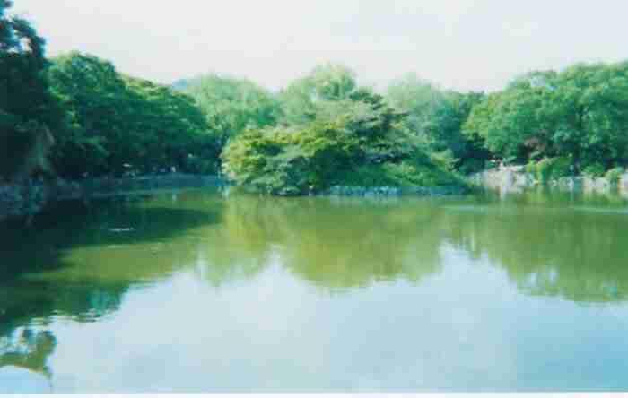 Seoul Palaces: Changgyeonggung Palace